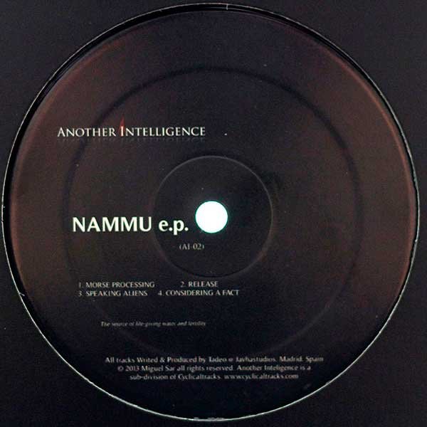Another-Intelligence-Tadeo-Nammu-Recording-Mix-Mastering-Javhastudios-Miguel-Sar